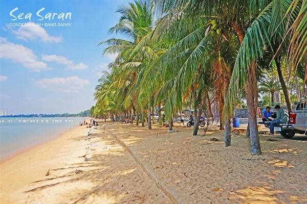bang saray beach chonb - 983×653